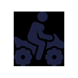 iconomotor